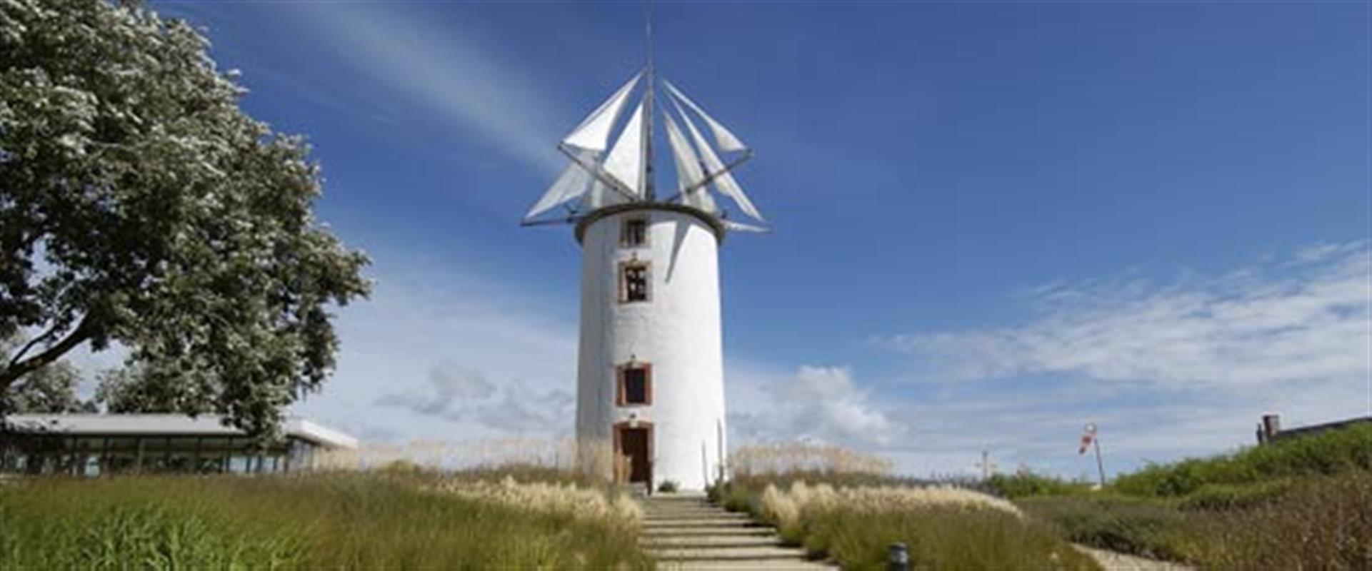 Le jardin du vent tourisme notre dame de monts en vend e pr s de saint jean de monts et for Le grand jardin in notre dame de monts